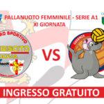 Lantech Plebiscito Padova: anticipo di campionato con Cosenza in casa