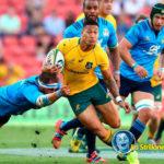 Rugby internazionale: la nazionale australiana si allena al CUS